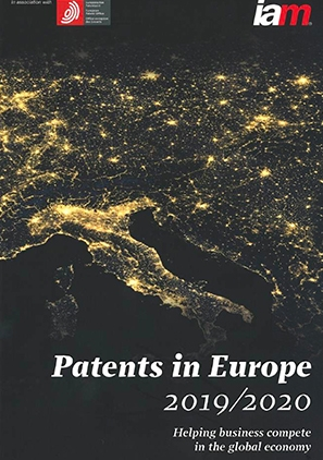 Patent Litigation Guide Patents in Europe